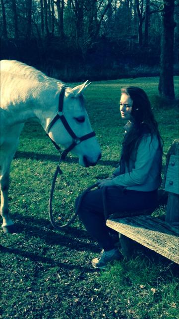 Paarden en kinderen