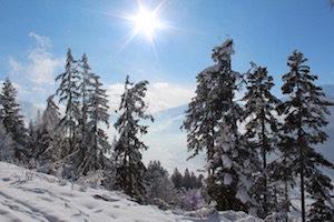 tips wintersport