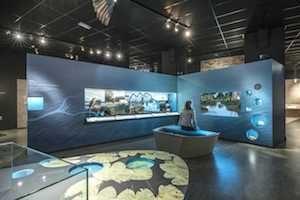 Natuur museum Tilburg
