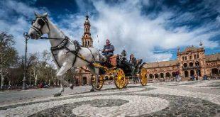 Sevilla leuke dingen met kinderen