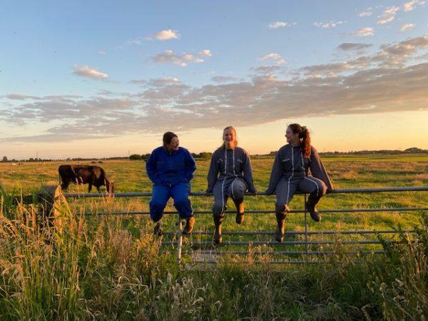 Zaai op de boerderij