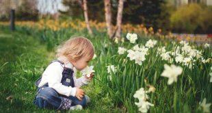 Tuin voor kinderen!