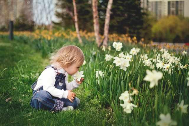 Een tuin voor kinderen?