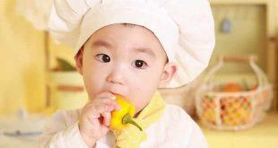 Vers-biologisch-eten-voor-je-baby