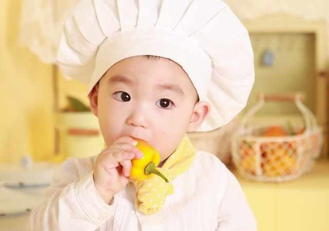 Vers biologisch eten voor je baby